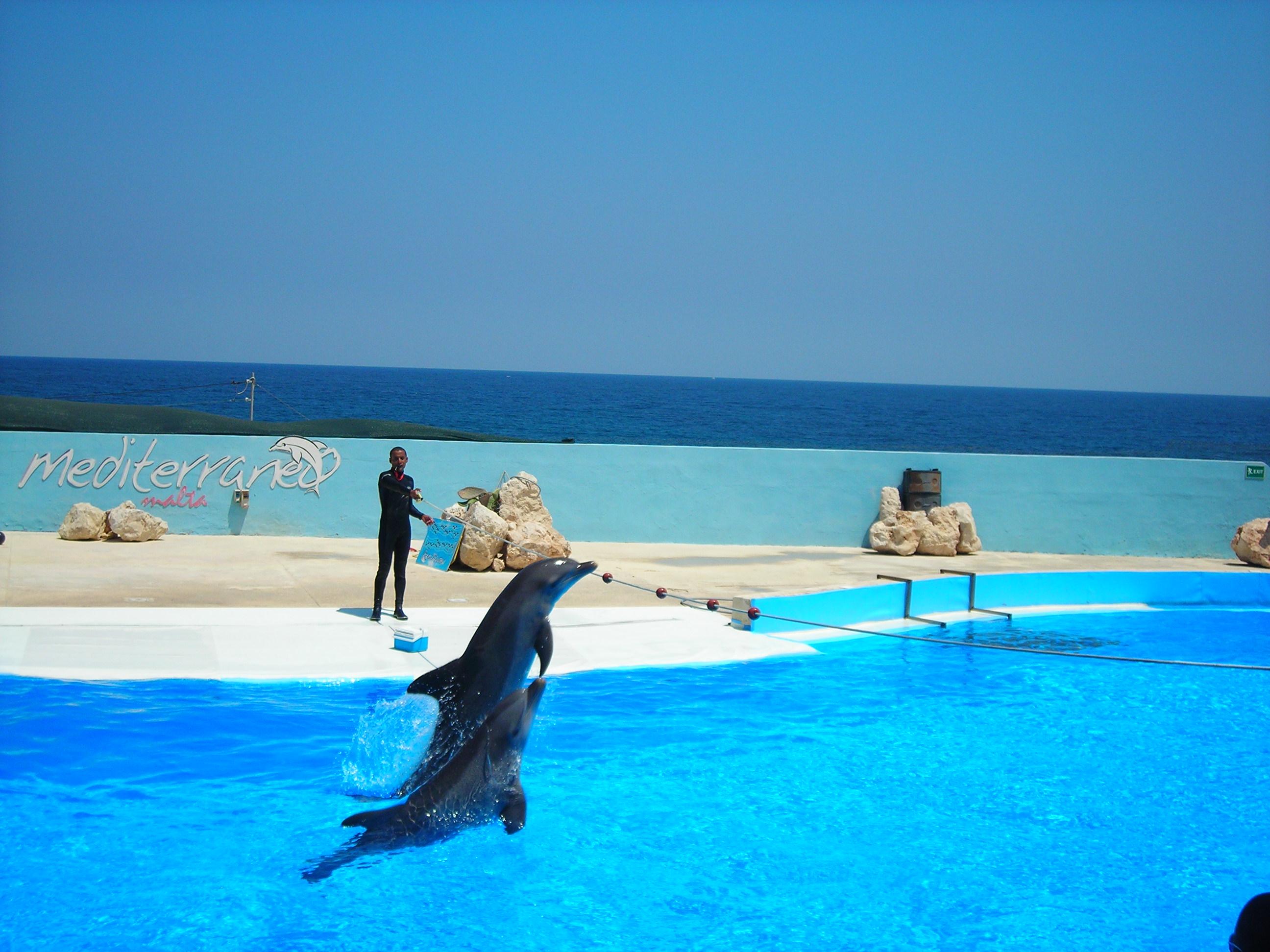 Visitare Malta: guida alle migliori attrazioni de La Valletta